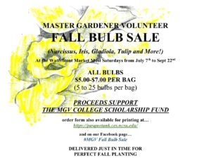 Cover photo for Pasquotank Master Gardener Volunteer Bulb Sale